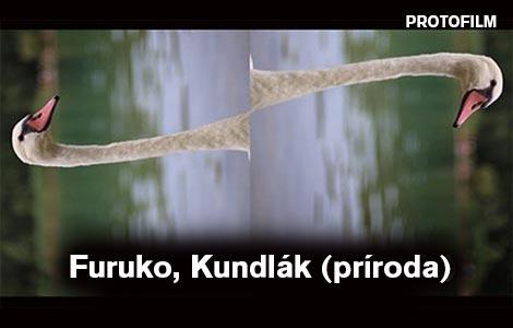 Furuko, Kundlak